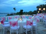 set up dinner dengan tiffany chairs